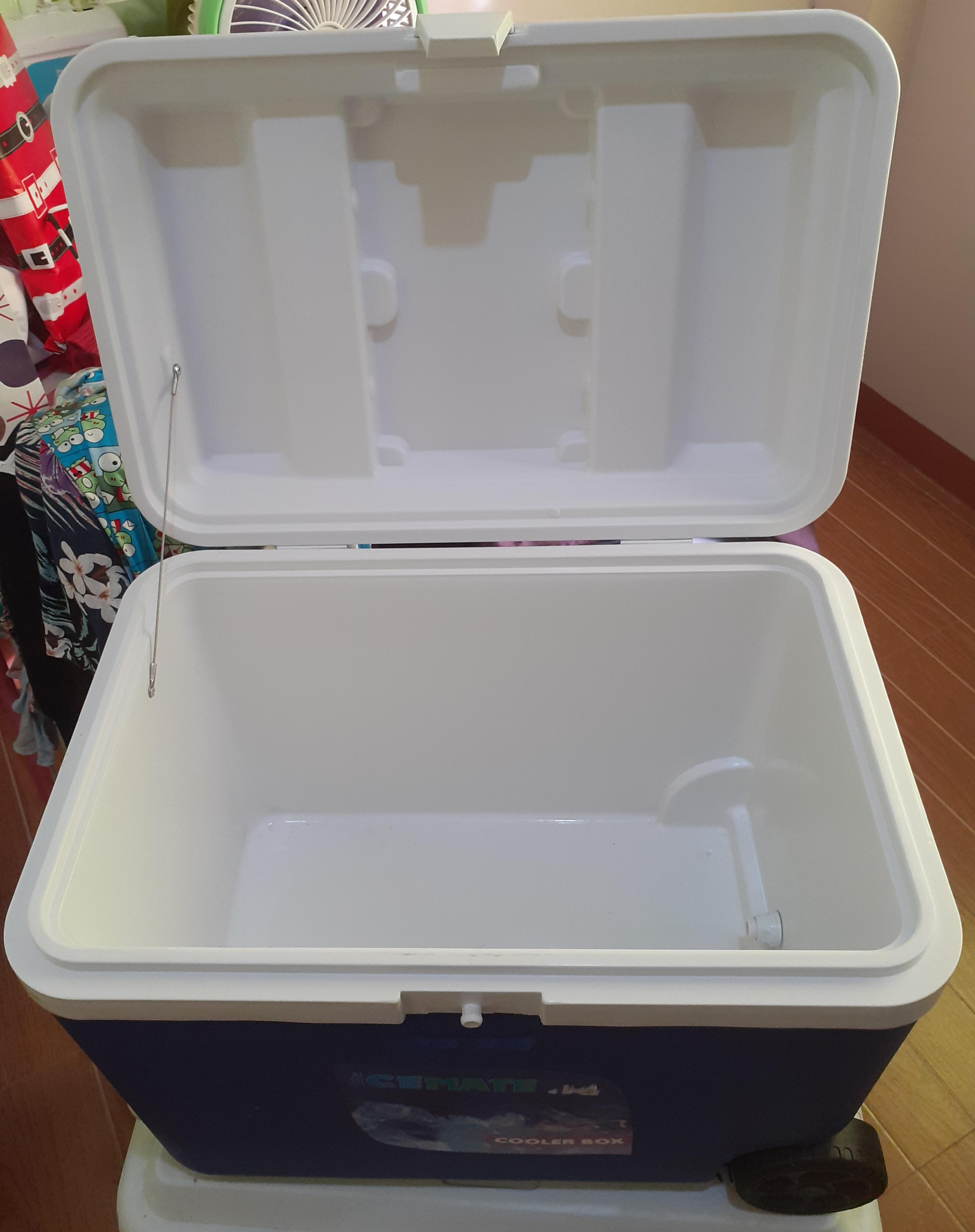Ice cooler with wheels