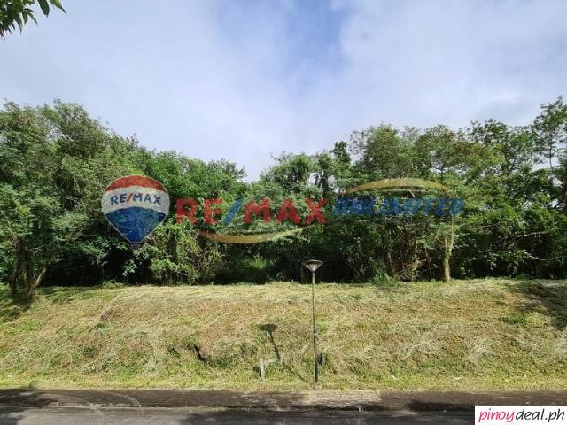 For Sale Ayala Greenfield Estates Vacant Lot