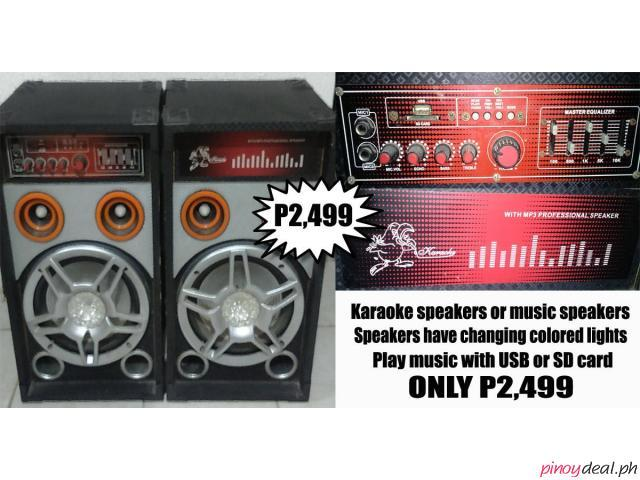 Karaoke Speakers with USB and SD card MP3 player.