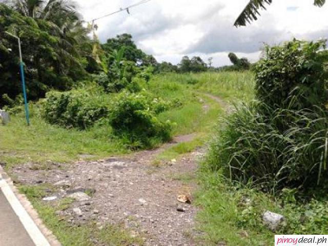 100 Hectare along Naic Indang Provincial Road, Brgy Palangue