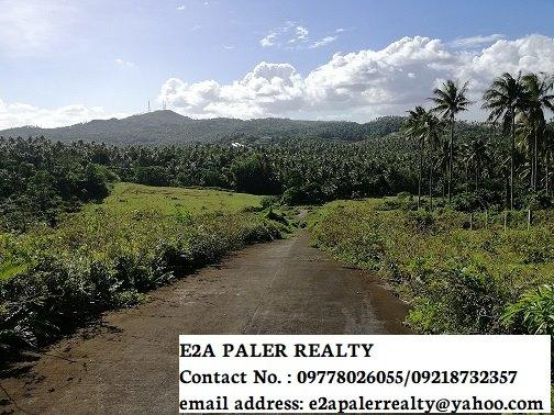 5.2 Hectares for Sale