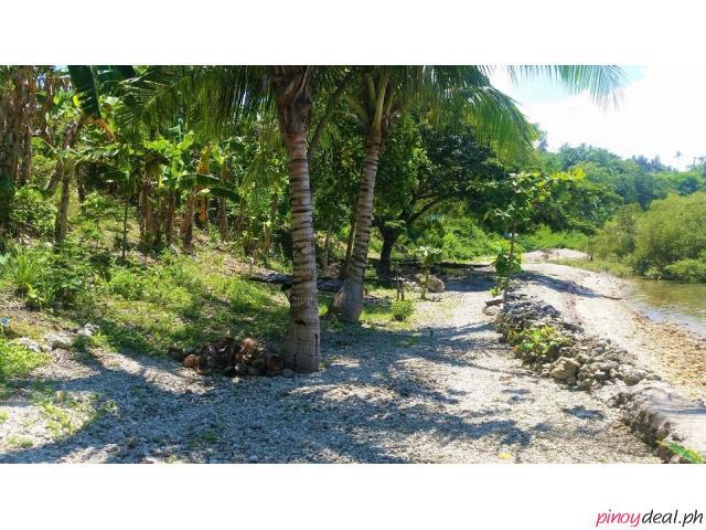 3,000 sqm beach lot in barili cebu