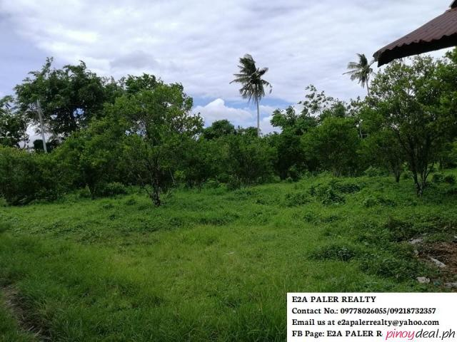 Agricultural Lot for sale