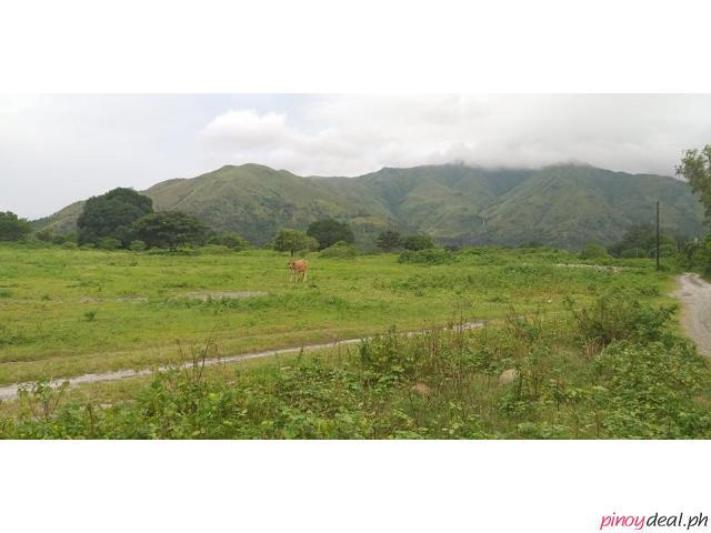 35 Hectares Lot For Sale